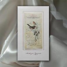KARTKA K534 z kopertą