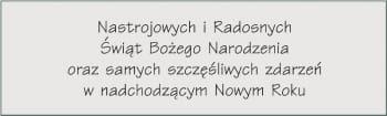 CZCIONKA 29