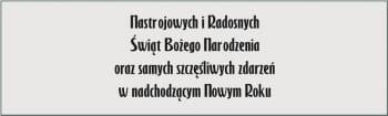 CZCIONKA 91