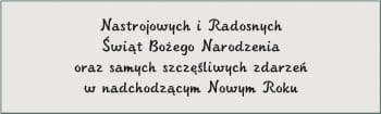 CZCIONKA 96